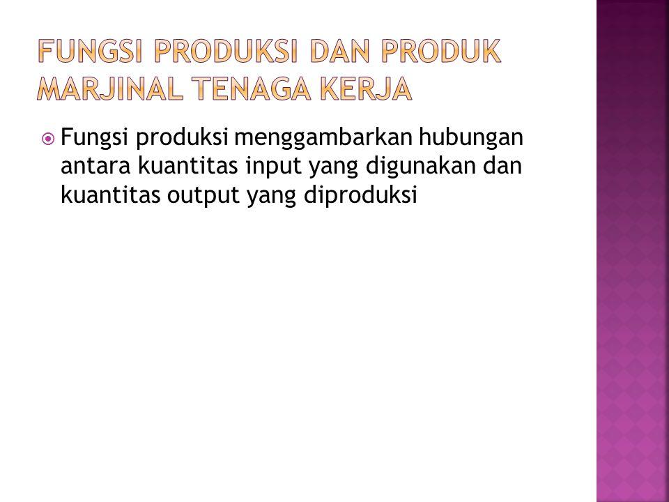 Fungsi Produksi dan Produk Marjinal Tenaga Kerja