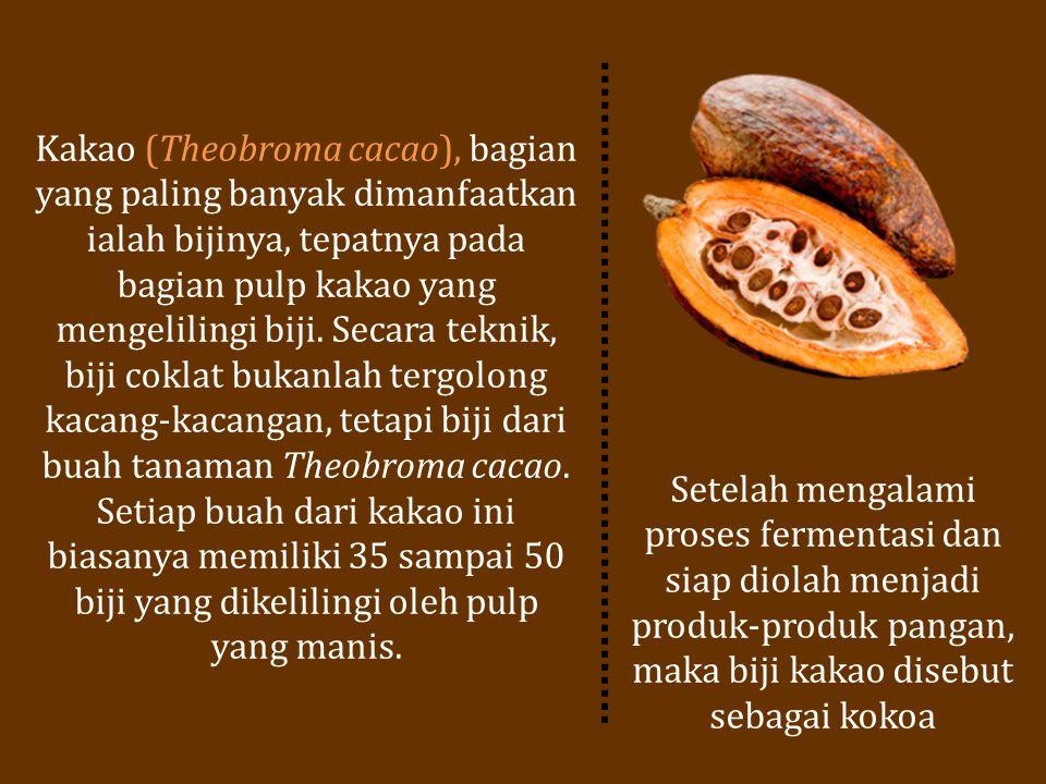 Kakao (Theobroma cacao), bagian yang paling banyak dimanfaatkan ialah bijinya, tepatnya pada bagian pulp kakao yang mengelilingi biji. Secara teknik, biji coklat bukanlah tergolong kacang-kacangan, tetapi biji dari buah tanaman Theobroma cacao. Setiap buah dari kakao ini biasanya memiliki 35 sampai 50 biji yang dikelilingi oleh pulp yang manis.