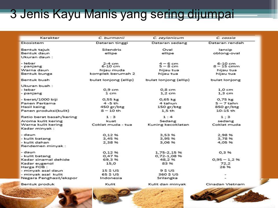 3 Jenis Kayu Manis yang sering dijumpai