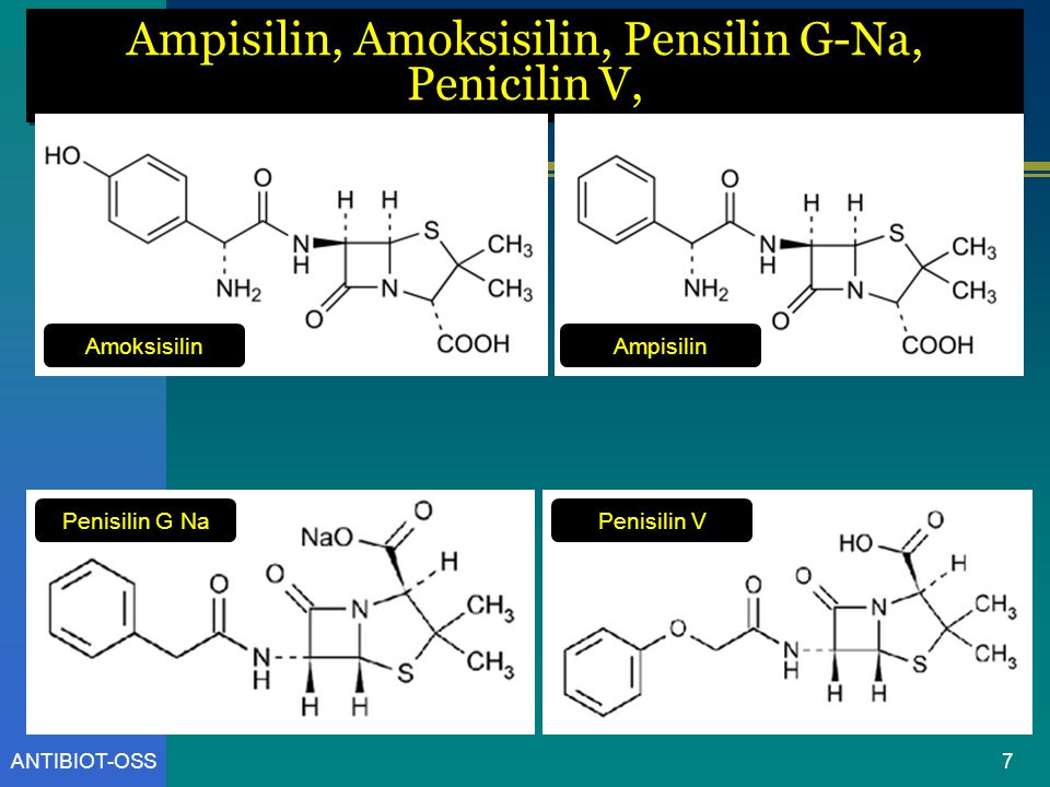 Ampisilin, Amoksisilin, Pensilin G-Na, Penicilin V,