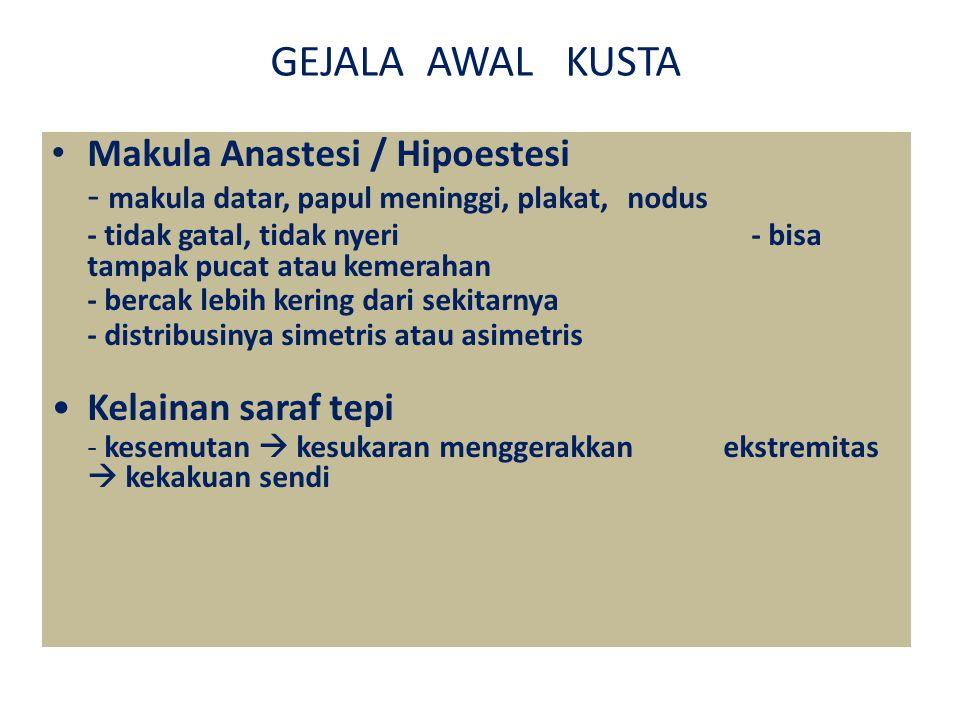 GEJALA AWAL KUSTA Makula Anastesi / Hipoestesi