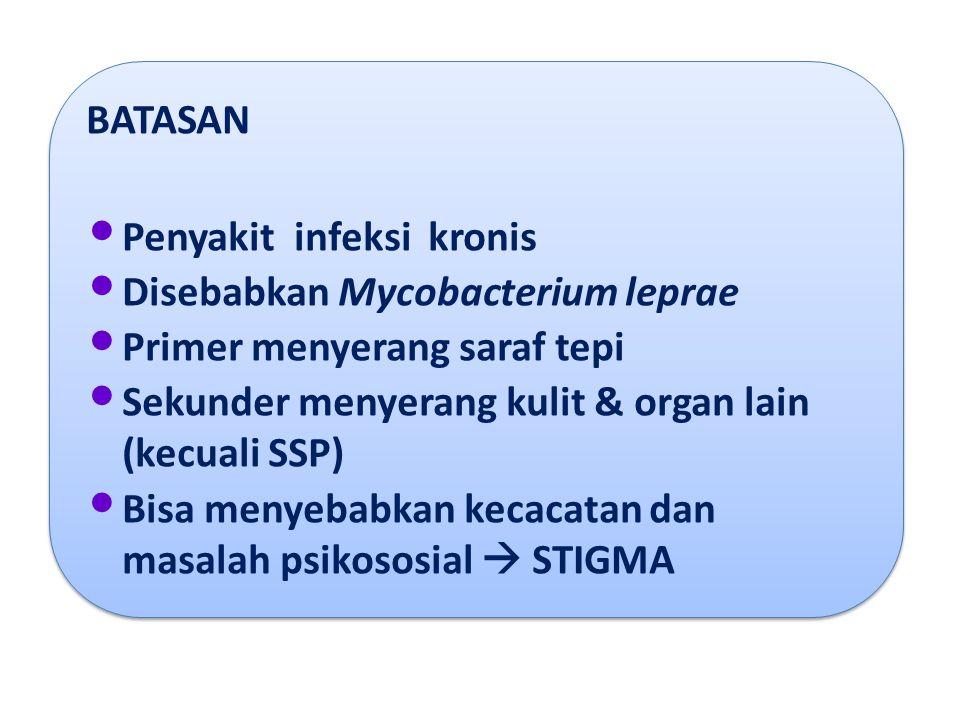 BATASAN Penyakit infeksi kronis. Disebabkan Mycobacterium leprae. Primer menyerang saraf tepi.