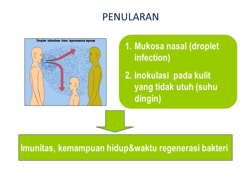 Imunitas, kemampuan hidup&waktu regenerasi bakteri