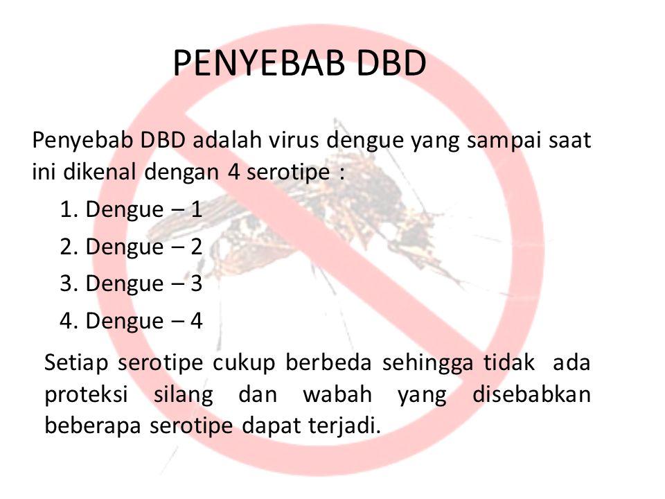 PENYEBAB DBD Penyebab DBD adalah virus dengue yang sampai saat ini dikenal dengan 4 serotipe : 1. Dengue – 1.