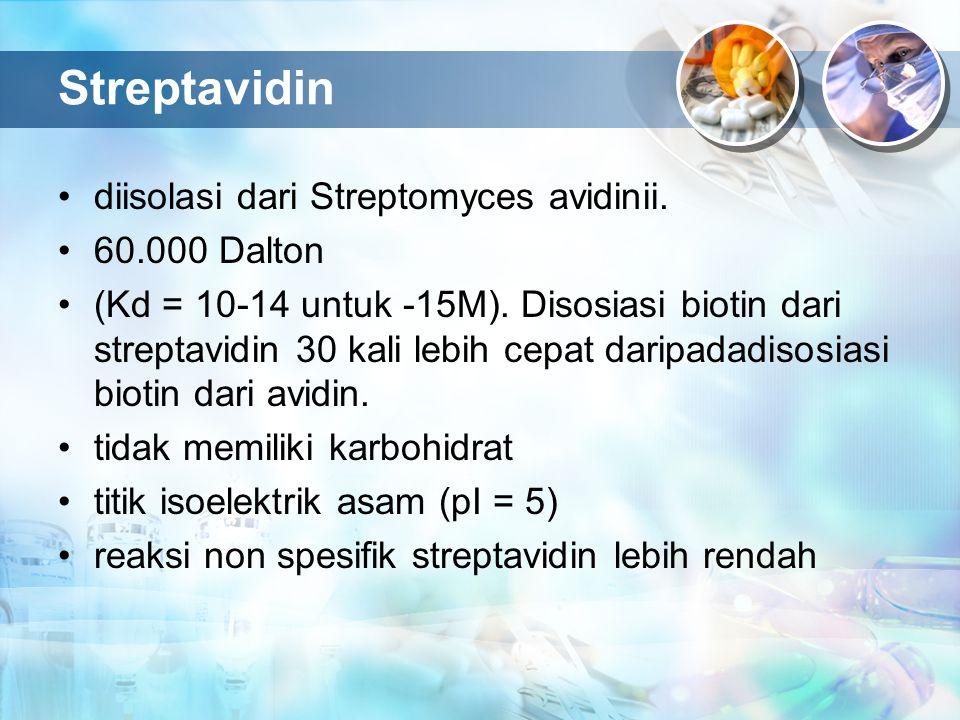 Streptavidin diisolasi dari Streptomyces avidinii. 60.000 Dalton