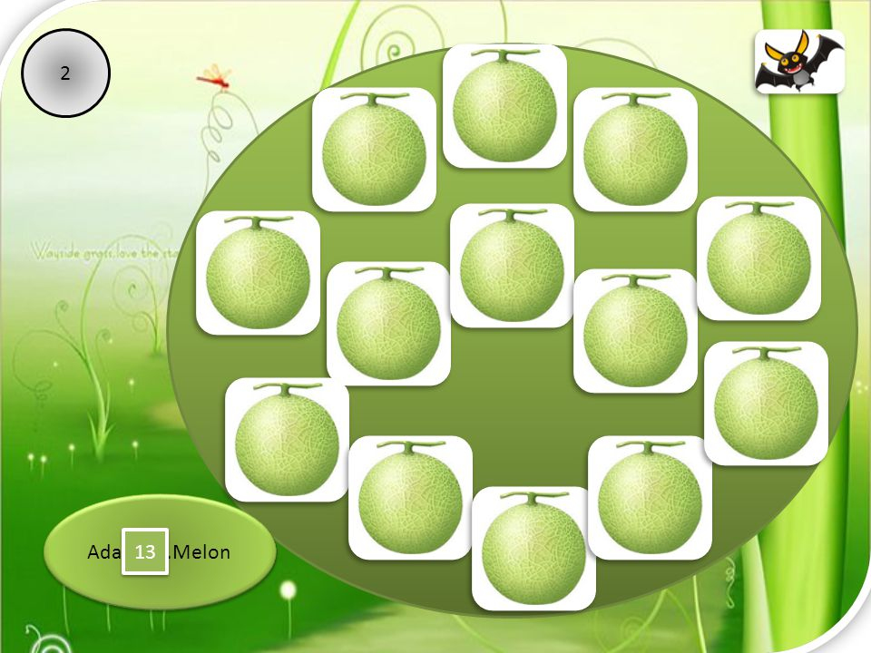 2 Ada ………Melon 13