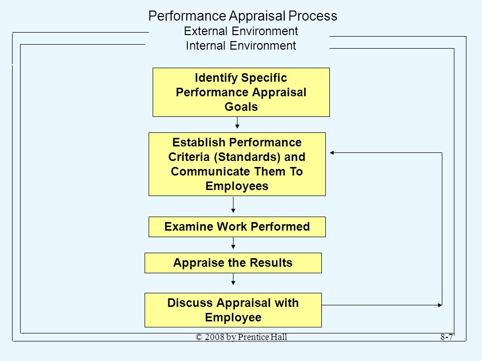 Performance Appraisal Process External Environment Internal Environment