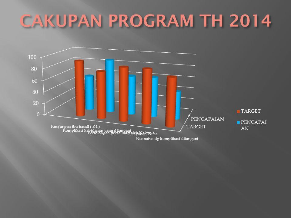 CAKUPAN PROGRAM TH 2014