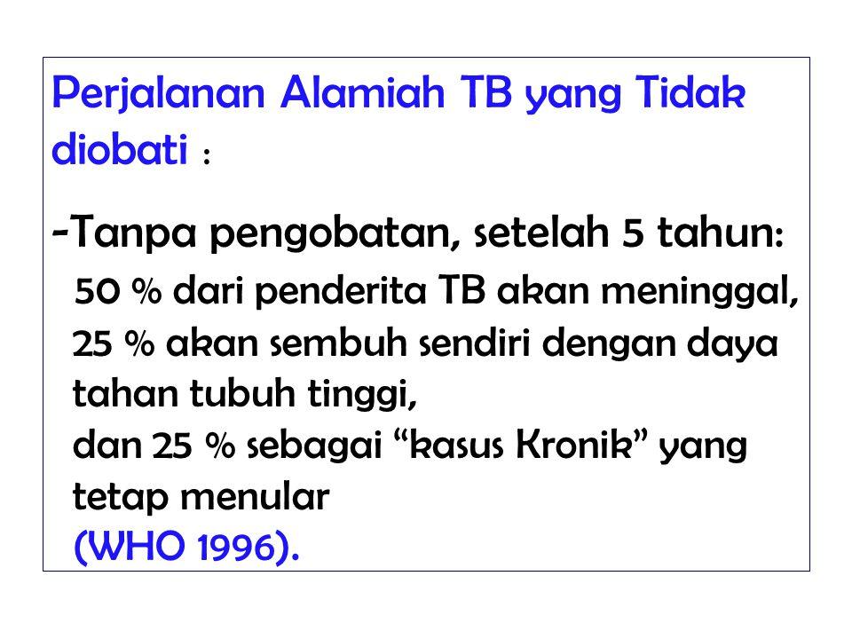 Perjalanan Alamiah TB yang Tidak diobati :