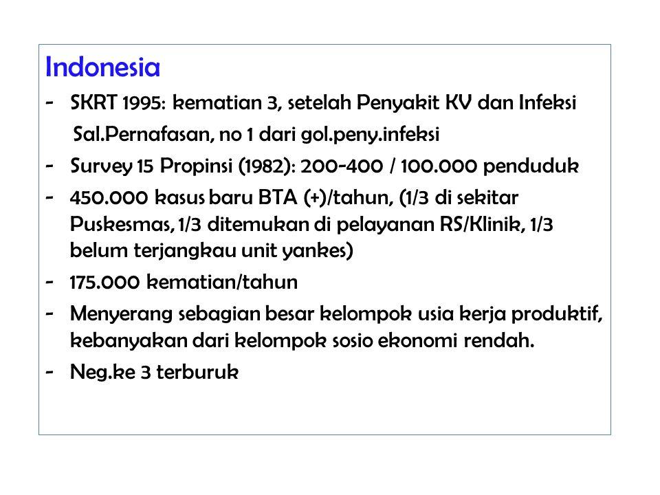 Indonesia SKRT 1995: kematian 3, setelah Penyakit KV dan Infeksi