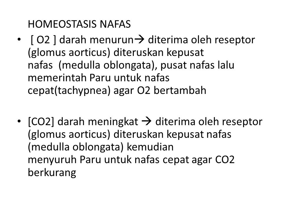 HOMEOSTASIS NAFAS