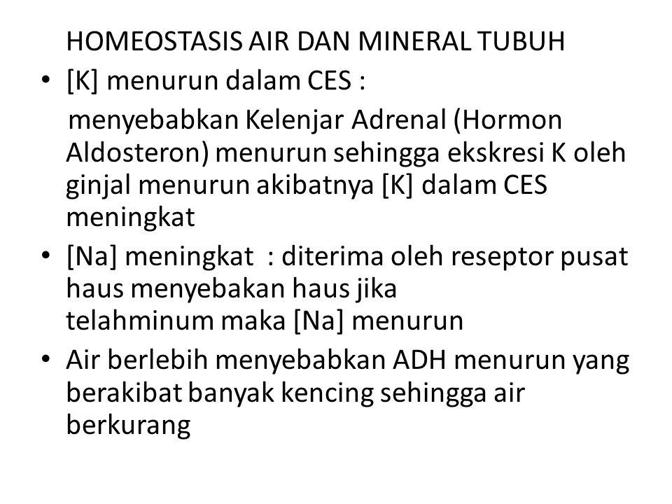 HOMEOSTASIS AIR DAN MINERAL TUBUH