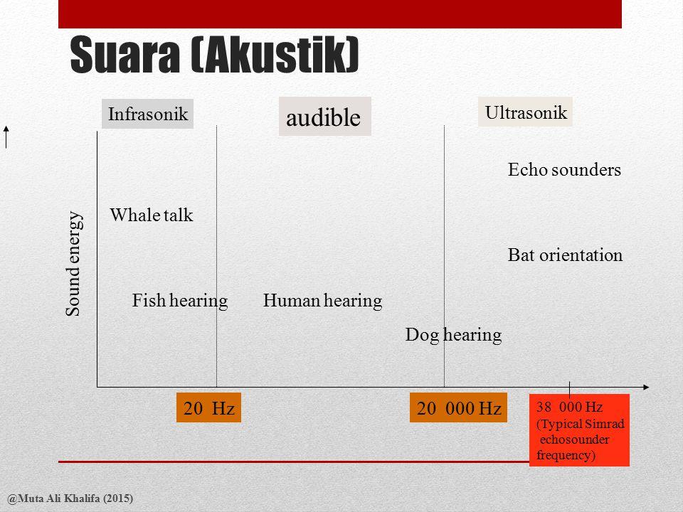 Suara (Akustik) audible Sound energy 20 Hz 20 000 Hz Infrasonik