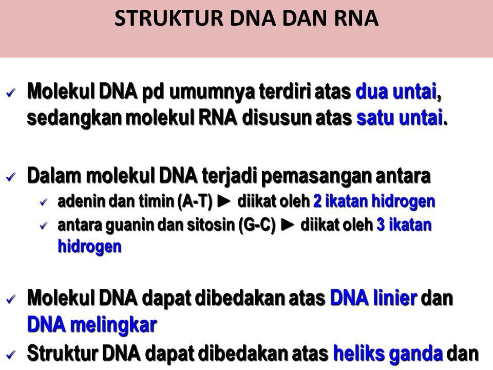 STRUKTUR DNA DAN RNA Molekul DNA pd umumnya terdiri atas dua untai, sedangkan molekul RNA disusun atas satu untai.