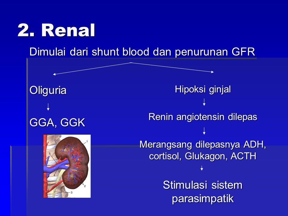2. Renal Oliguria Dimulai dari shunt blood dan penurunan GFR GGA, GGK