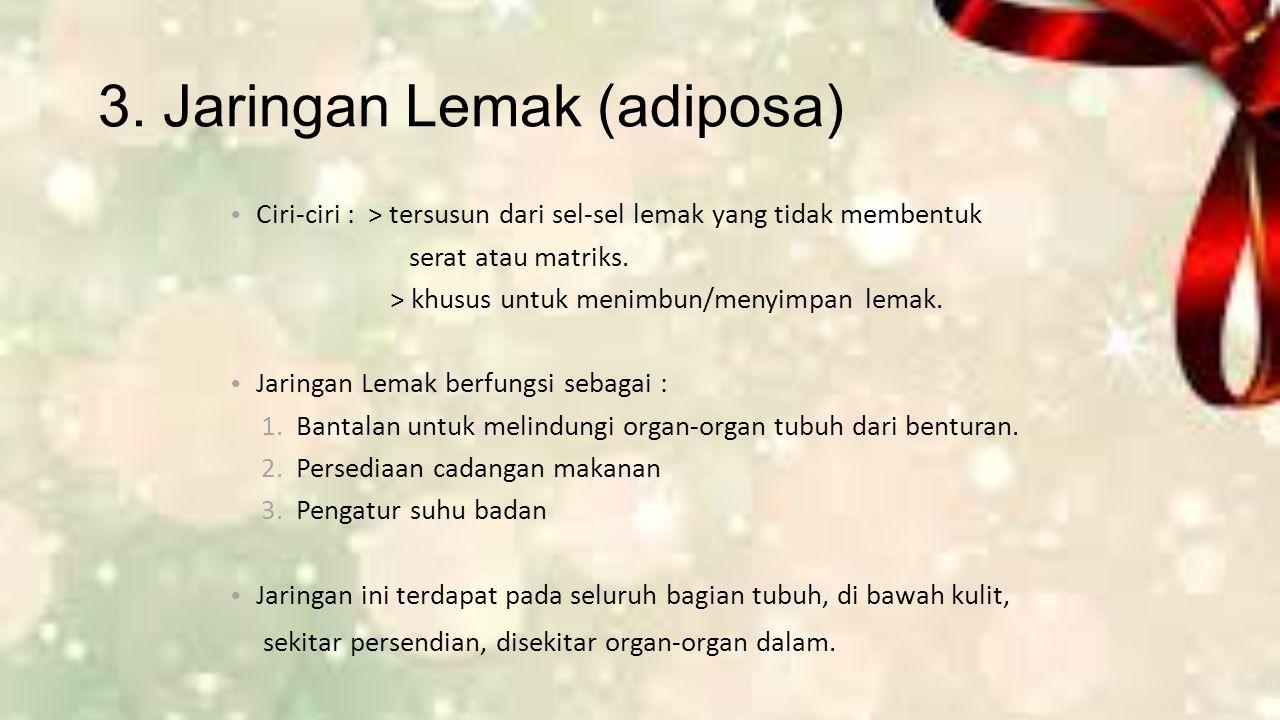 3. Jaringan Lemak (adiposa)