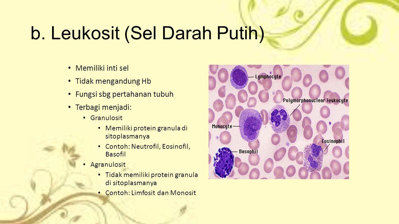 b. Leukosit (Sel Darah Putih)