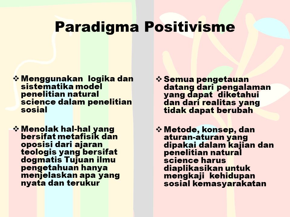 Paradigma Positivisme