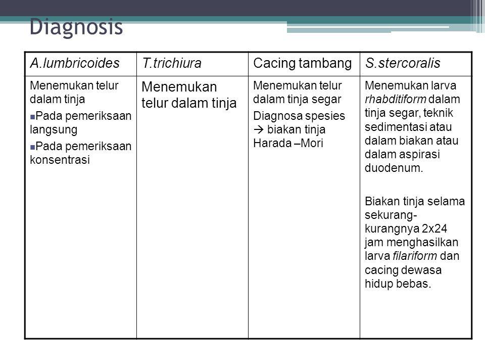Diagnosis A.lumbricoides T.trichiura Cacing tambang S.stercoralis