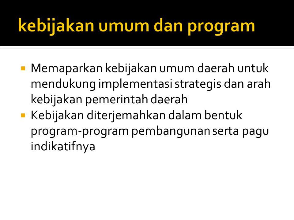 kebijakan umum dan program