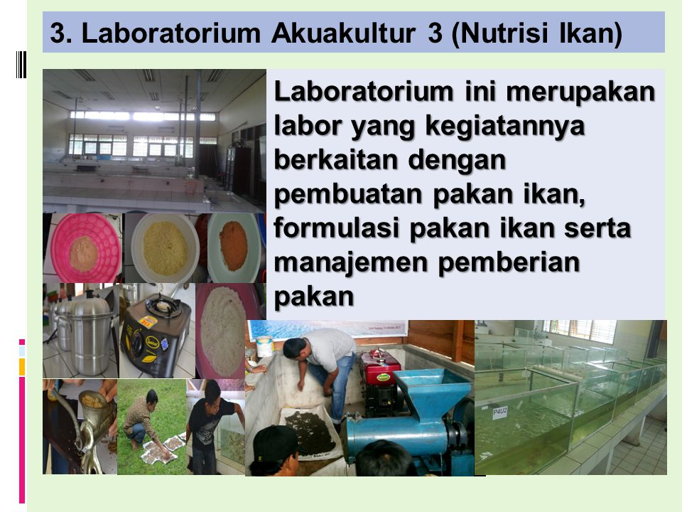 3. Laboratorium Akuakultur 3 (Nutrisi Ikan)