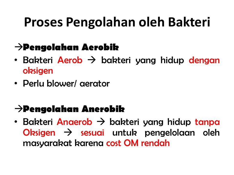 Proses Pengolahan oleh Bakteri