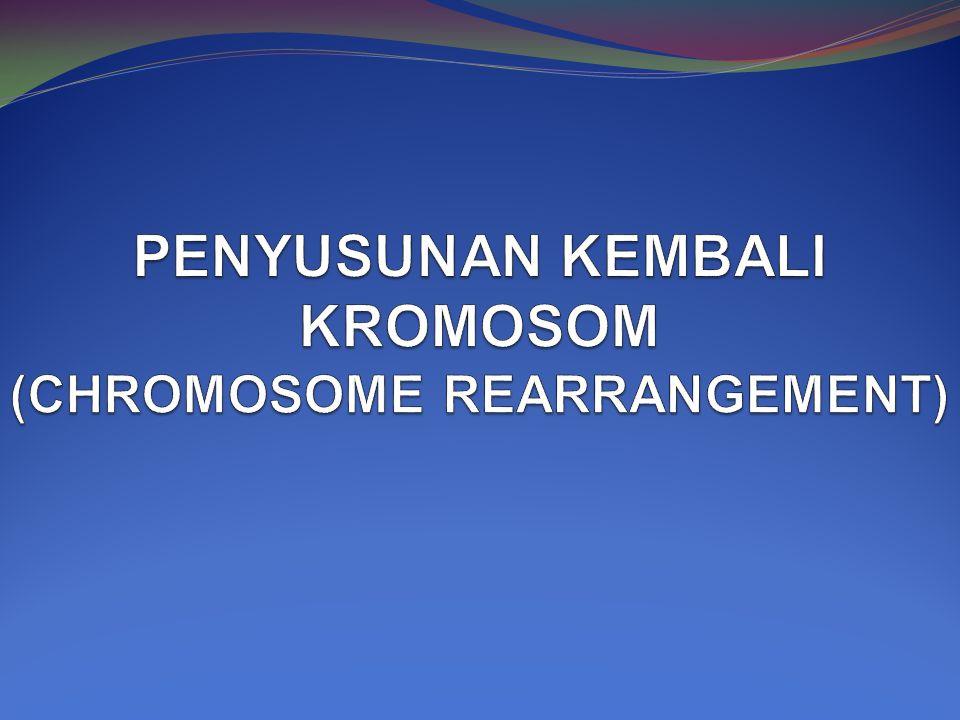 PENYUSUNAN KEMBALI KROMOSOM (CHROMOSOME REARRANGEMENT)