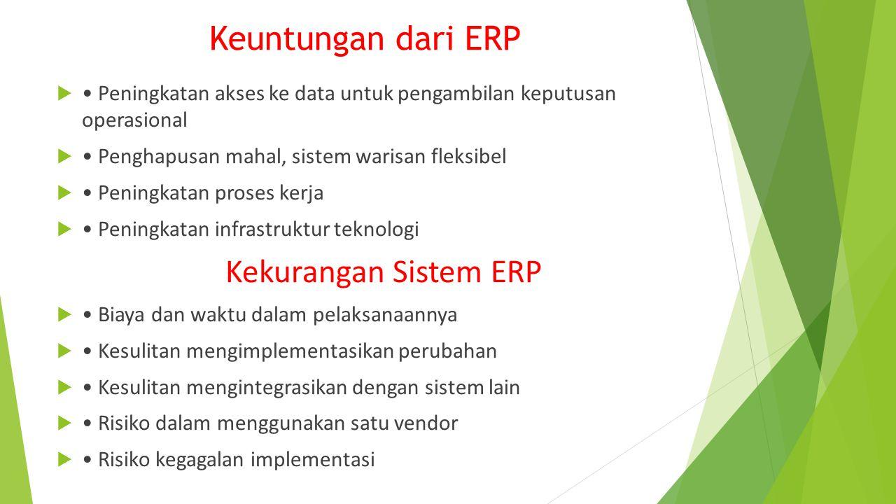 Keuntungan dari ERP Kekurangan Sistem ERP