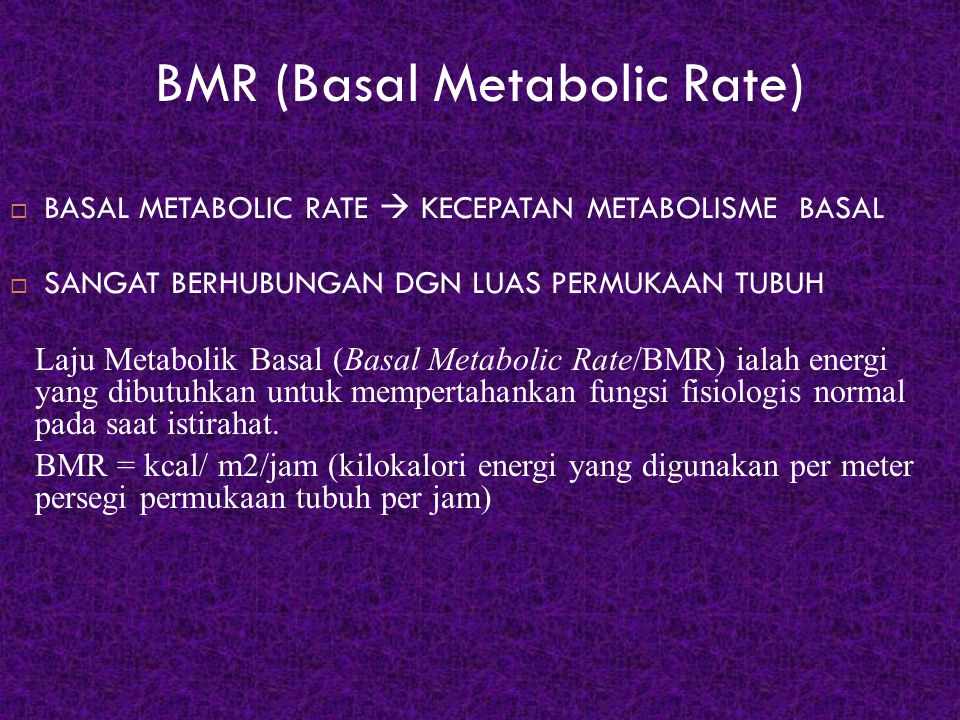 BMR (Basal Metabolic Rate)