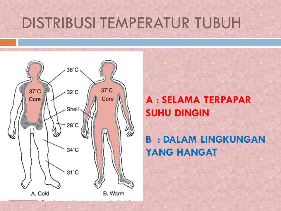 DISTRIBUSI TEMPERATUR TUBUH