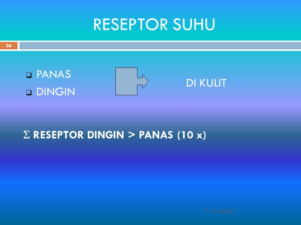 RESEPTOR SUHU PANAS DI KULIT DINGIN