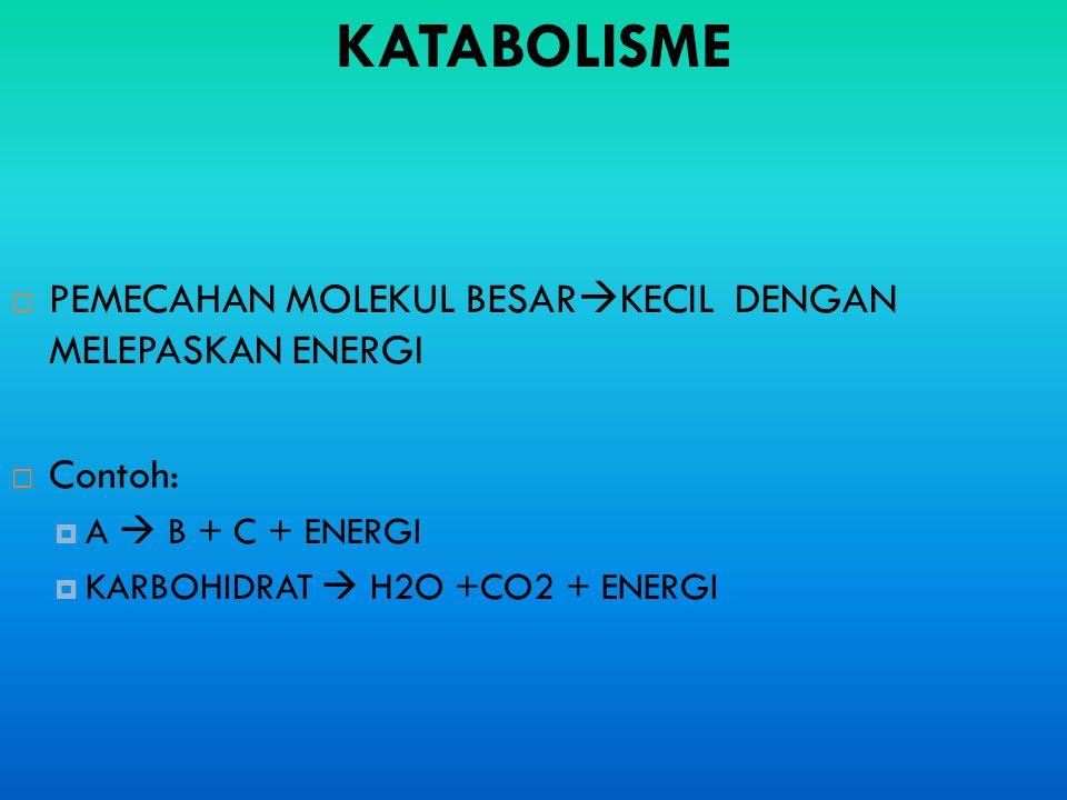 KATABOLISME PEMECAHAN MOLEKUL BESARKECIL DENGAN MELEPASKAN ENERGI