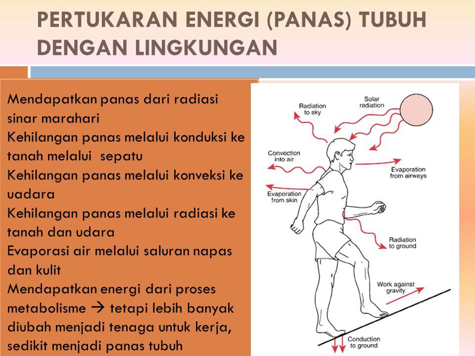 PERTUKARAN ENERGI (PANAS) TUBUH DENGAN LINGKUNGAN