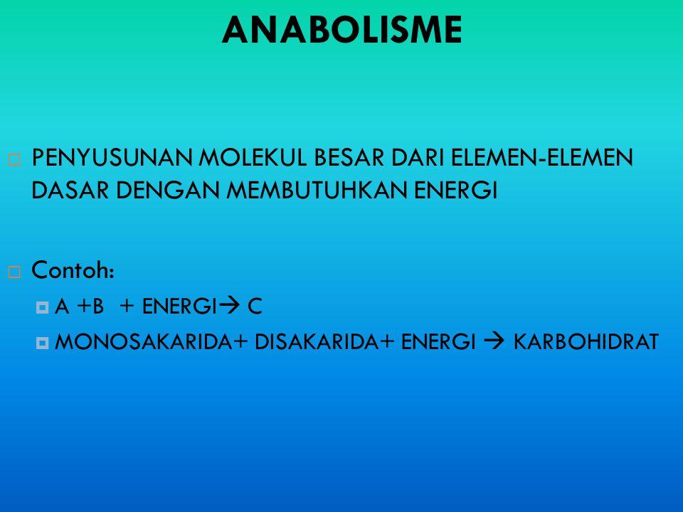 ANABOLISME PENYUSUNAN MOLEKUL BESAR DARI ELEMEN-ELEMEN DASAR DENGAN MEMBUTUHKAN ENERGI. Contoh: A +B + ENERGI C.