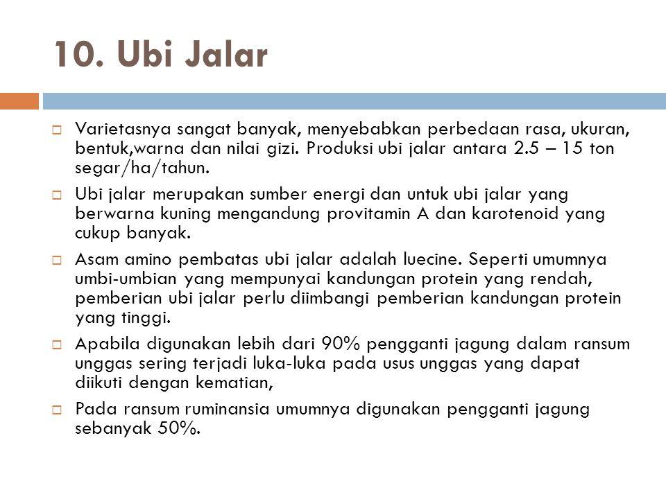 10. Ubi Jalar