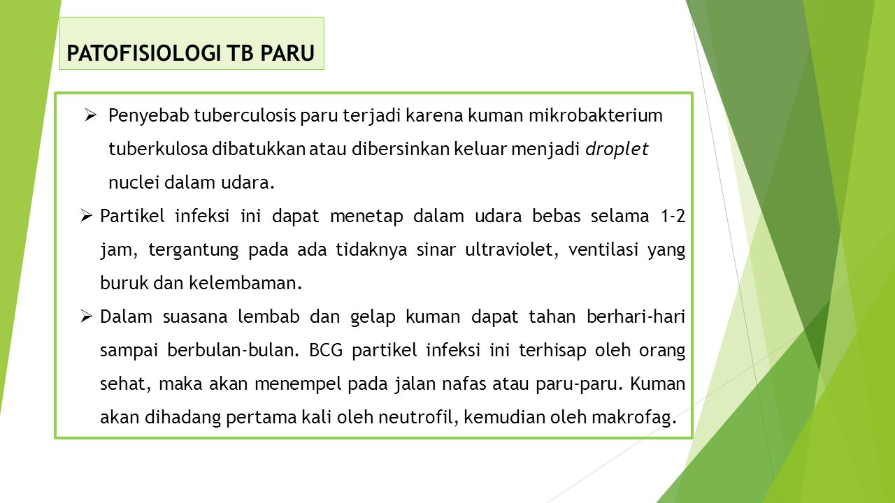 PATOFISIOLOGI TB PARU