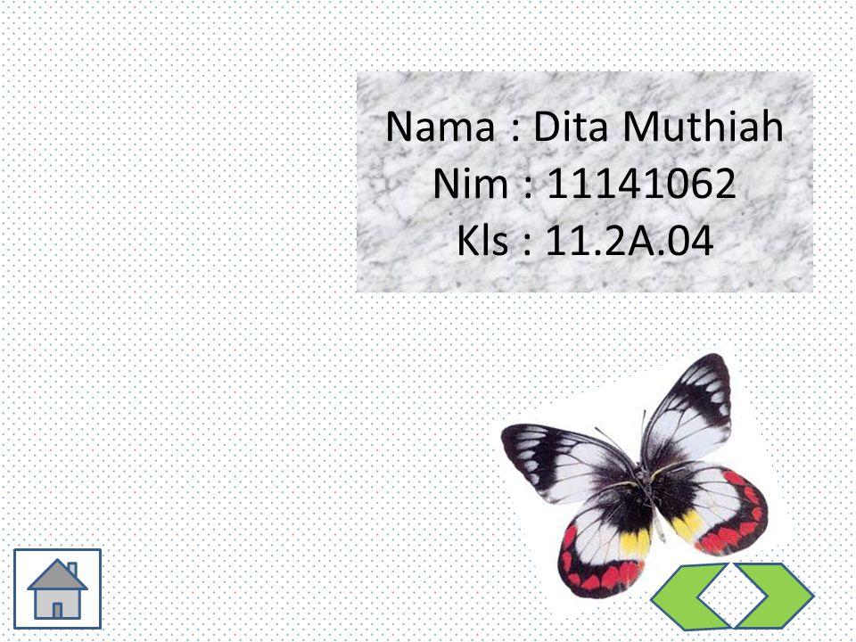 Nama : Dita Muthiah Nim : 11141062 Kls : 11.2A.04