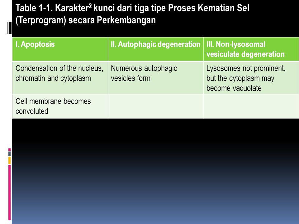 Table 1-1. Karakter2 kunci dari tiga tipe Proses Kematian Sel (Terprogram) secara Perkembangan