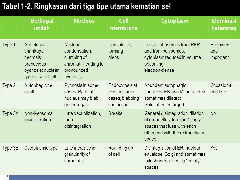 Tabel 1-2. Ringkasan dari tiga tipe utama kematian sel