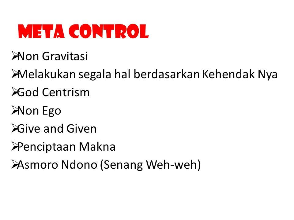 Meta Control Non Gravitasi