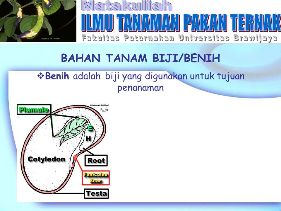 BAHAN TANAM BIJI/BENIH