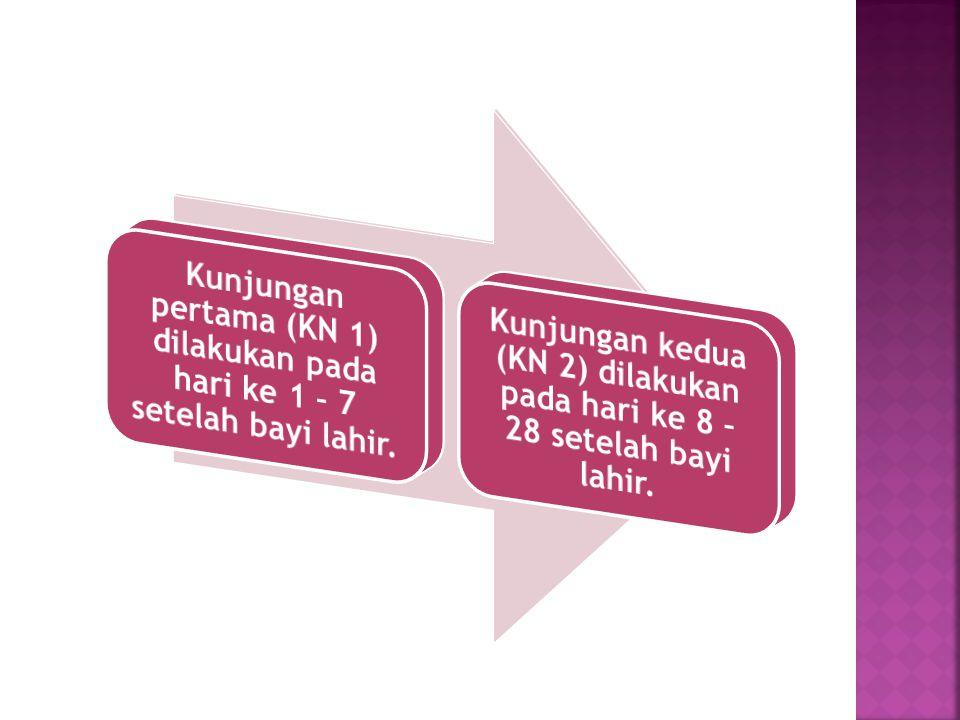 Kunjungan pertama (KN 1) dilakukan pada hari ke 1 – 7 setelah bayi lahir.