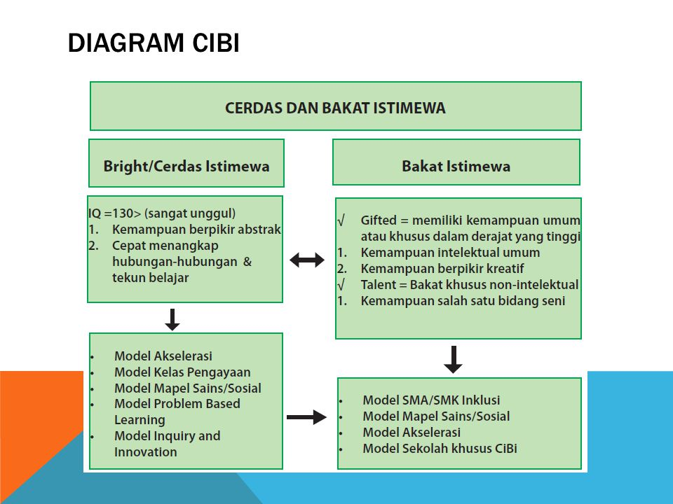 Diagram CiBi