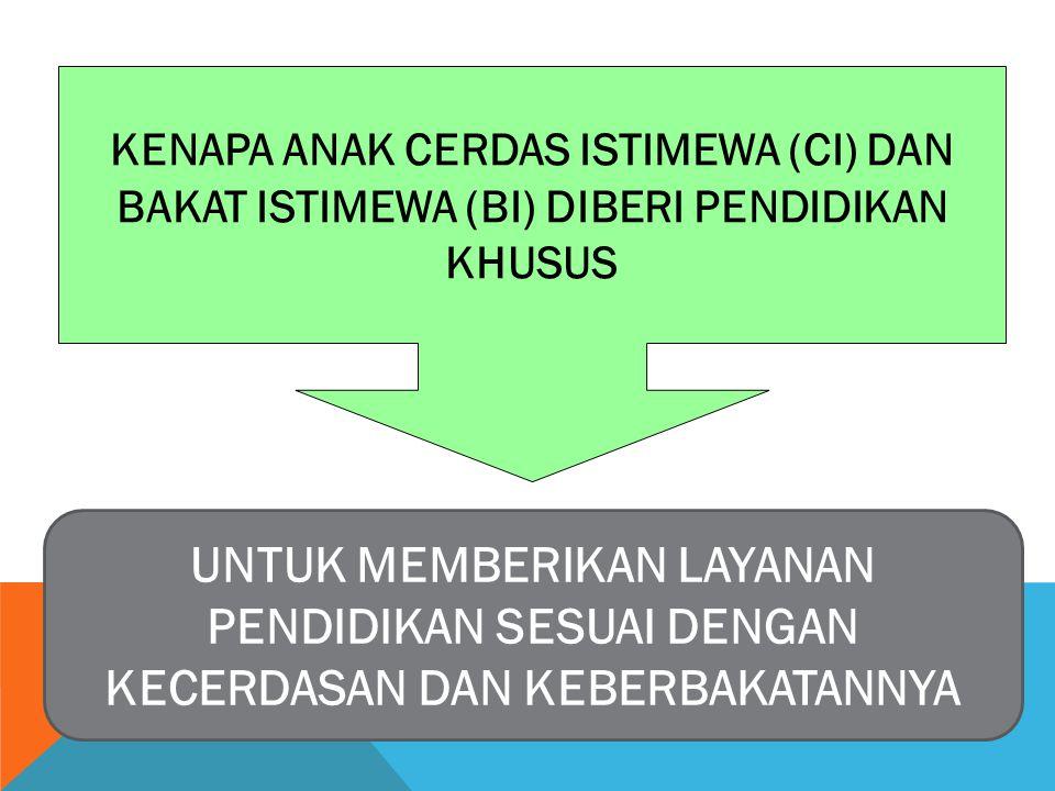KENAPA ANAK CERDAS ISTIMEWA (CI) DAN BAKAT ISTIMEWA (BI) DIBERI PENDIDIKAN KHUSUS