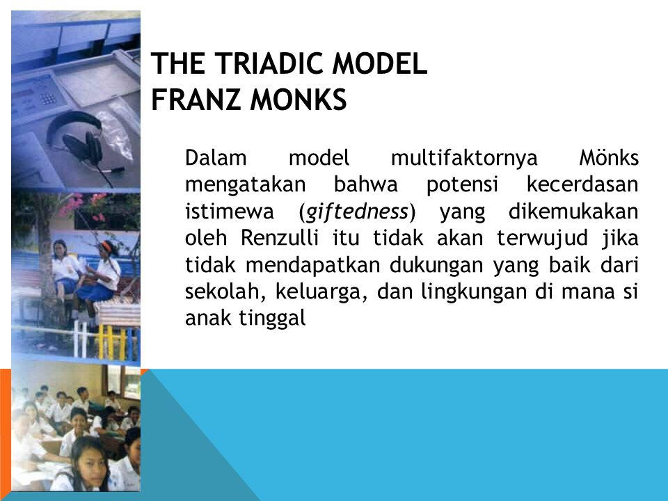 THE TRIADIC MODEL FRANZ MONKS