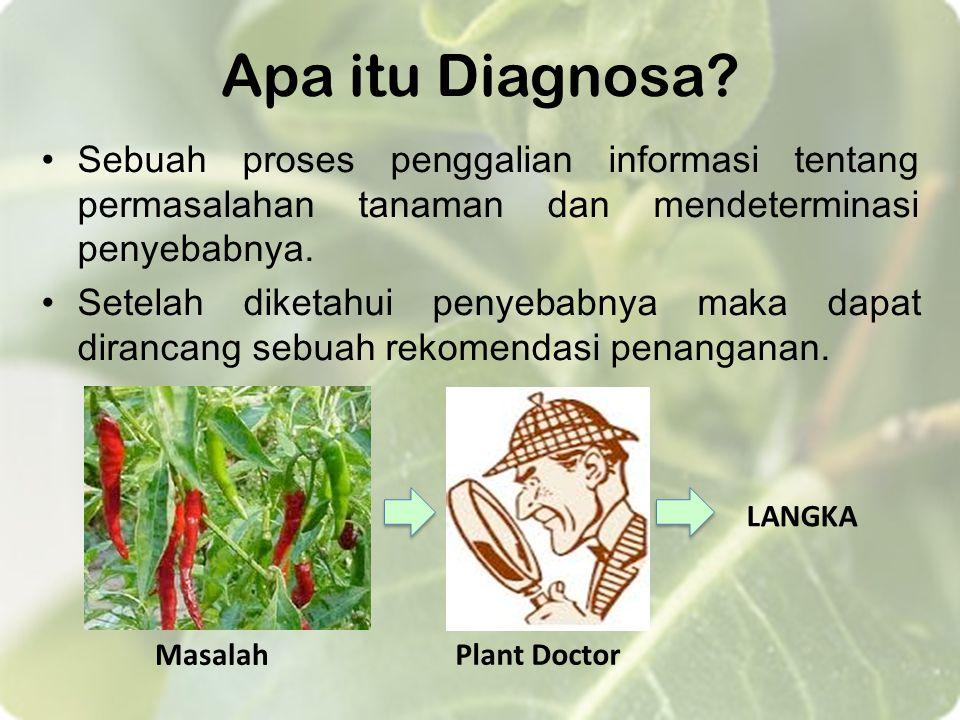 Apa itu Diagnosa Sebuah proses penggalian informasi tentang permasalahan tanaman dan mendeterminasi penyebabnya.