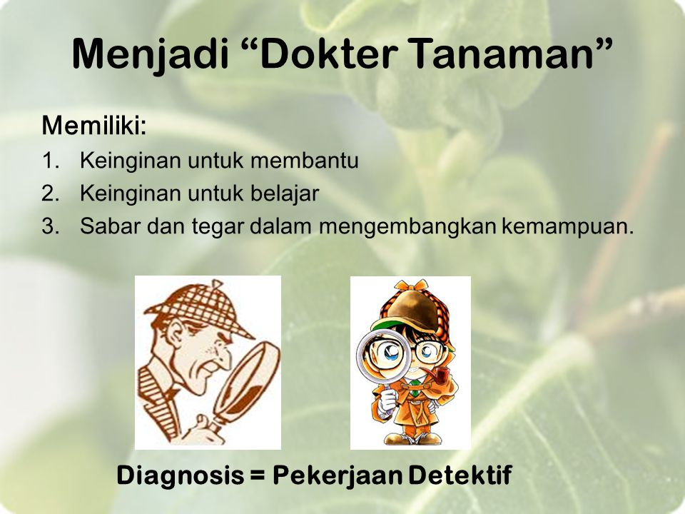 Menjadi Dokter Tanaman
