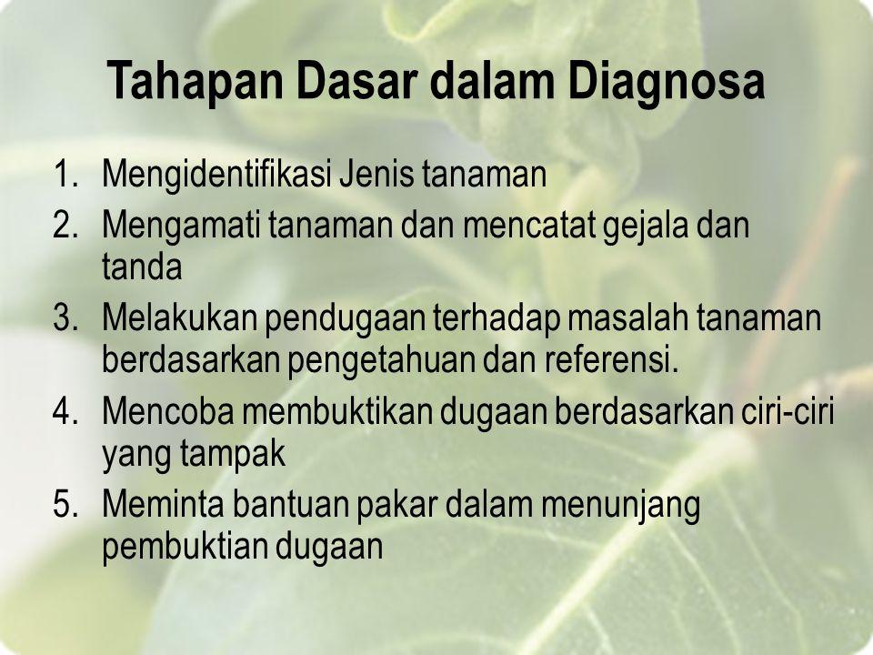 Tahapan Dasar dalam Diagnosa