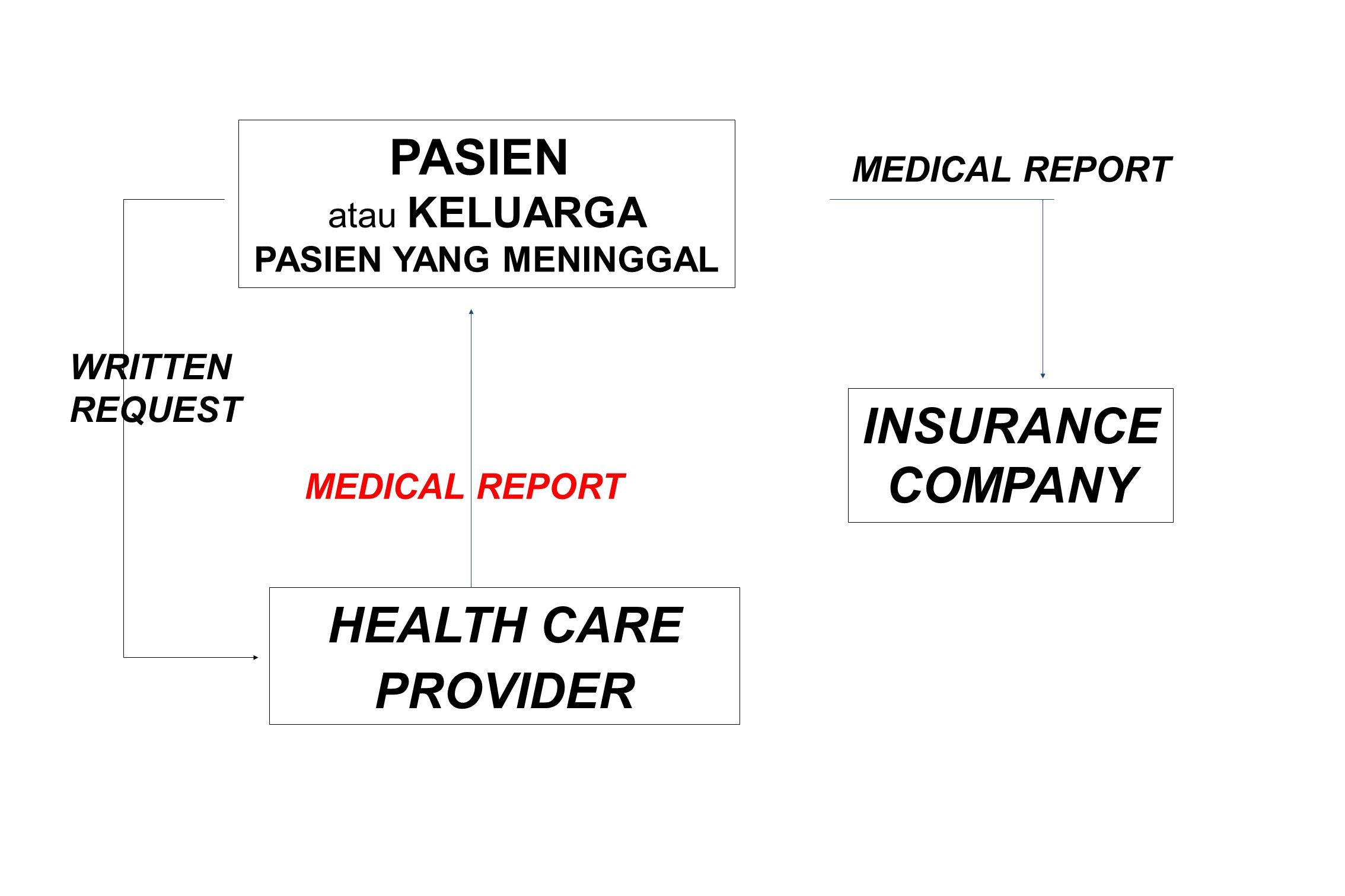 PASIEN INSURANCE COMPANY HEALTH CARE PROVIDER