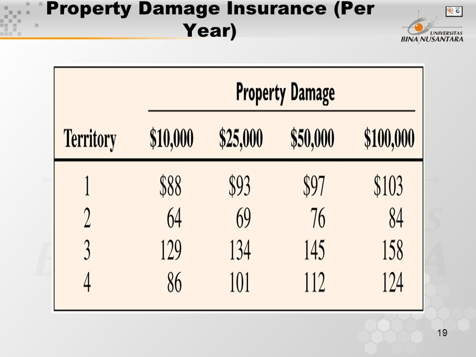 Property Damage Insurance (Per Year)